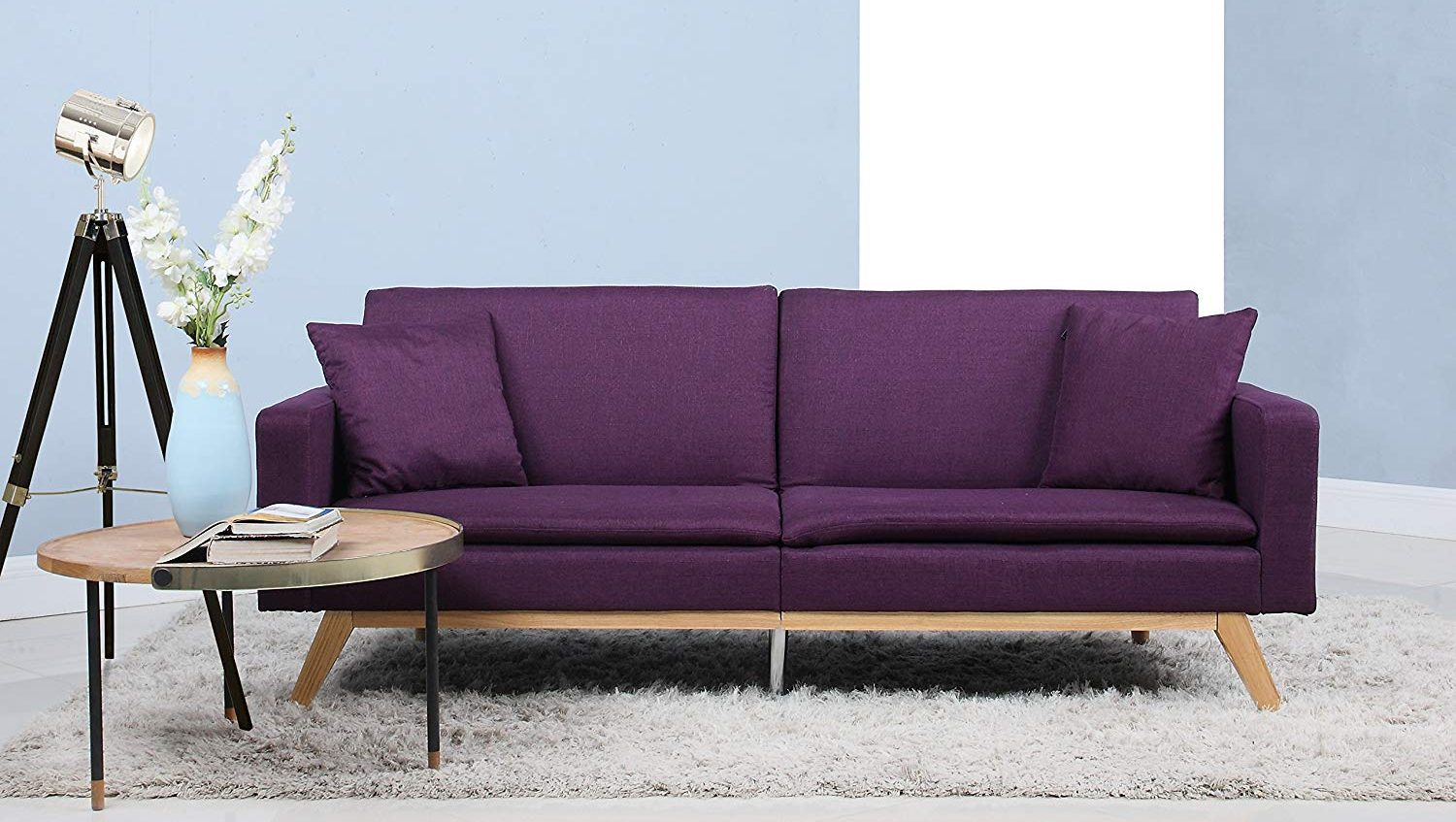 Sleeper Futon Sofa