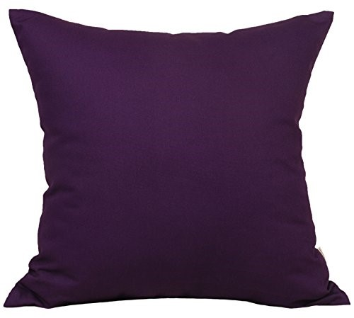 Purple Throw Pillows